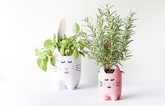 Bien-Chai-CoCa-Thanh-Chau-Hello-Kitty-Cuc-Cute