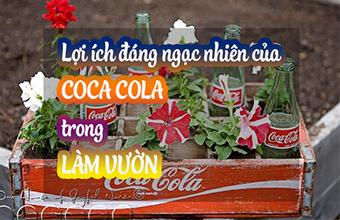 Su-Dung-Coca-Cola-Trong-Lam-Vuon