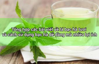 Tong-hop-cac-bai-viet-ve-la-bac-ha-tuoi