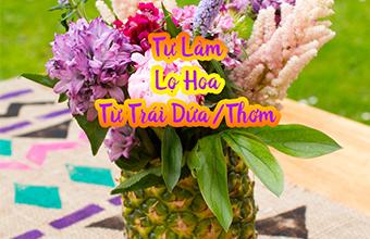 tu_lam_lo_hoa_tu_trai_dua_011