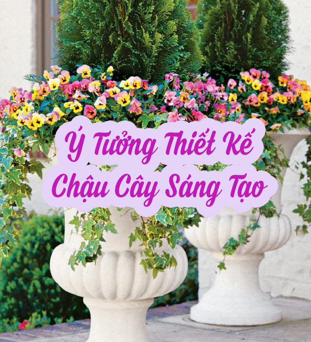 y-tuong-trong-cay-sang-tao-00